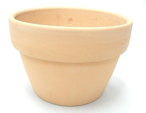 素焼き鉢 5.0号 α型 アルファ 中深 6枚セット 洋蘭 カトレア 原種