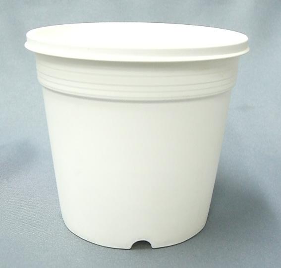 プラ鉢 A-25 白 30個セット