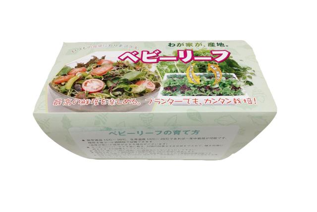 ベビーリーフ 栽培セット (鉢+培養土+種)