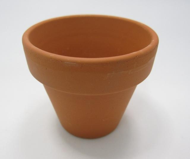 ドイツ製 仕立鉢 植木鉢 100個セット 穴なし 5.5cm 多肉 サボテン