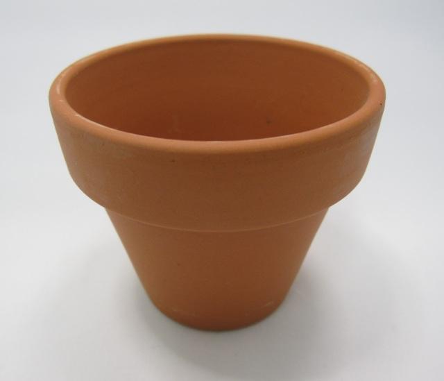 ドイツ製 仕立鉢 植木鉢 100個セット 穴なし 6.7cm 多肉 サボテン