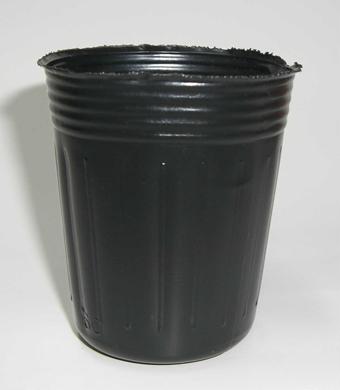 ポリポット深型 6.5cm 黒 2500個
