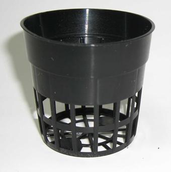 穴鉢 6cm 黒 50個 硬質ポリポット