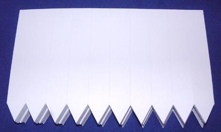ラインラベル500枚 #C 白 11cm 幅広 / ネコポス便可