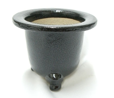観音竹鉢 京楽焼 4.0号 サナ付き