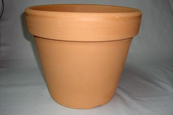 洋蘭 素焼き鉢 7号