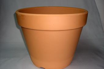 洋蘭 素焼き鉢 10号
