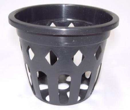 穴鉢 10.5cm 黒 10個 富貴蘭 多肉植物 サボテン 洋蘭 原種