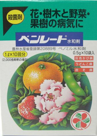 ベンレート水和剤 0.5gx10袋 殺菌剤 球根の消毒 / ネコポス便可