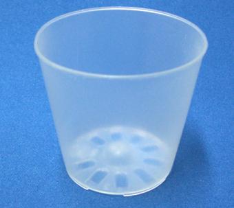 半透明 プラ鉢 6cm 10個