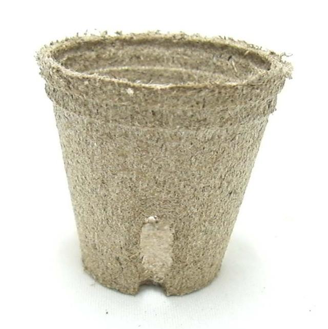 ジフィーポット 5.5cm 3400個セット 穴あり 種まき 挿し芽 Jiffy