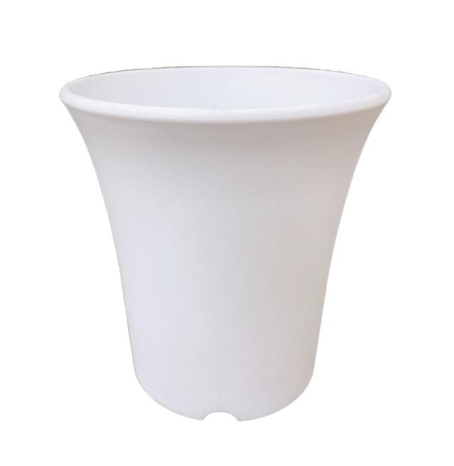 ミニ蘭鉢 白(ホワイト) プラ鉢 4号 10個 ミニラン鉢