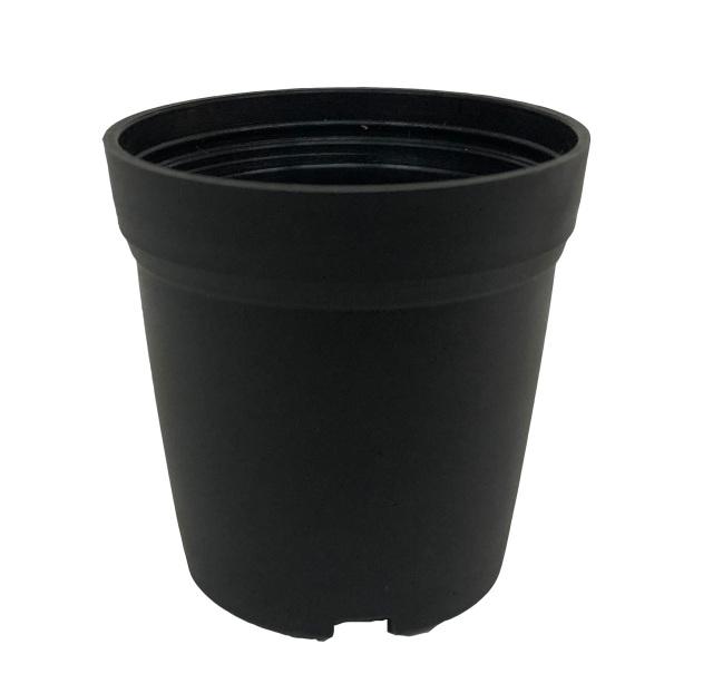 ナーセリーテラポット 3.5cm 黒 3500個セット 多肉植物 サボテン 送料無料