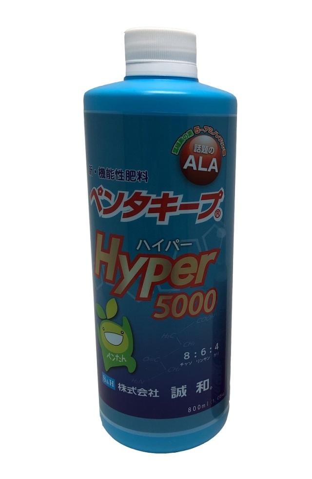 【送料無料】 ペンタキープ Hyper5000 1.05kg(800ml) ALA 配合