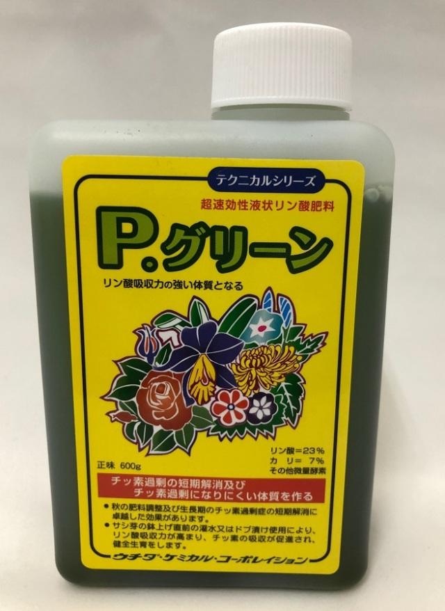 P.グリーン 600g ウチダケミカルテクニカルシリーズ