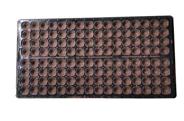 プラントプラグ 128穴 10個セット サカタのタネ