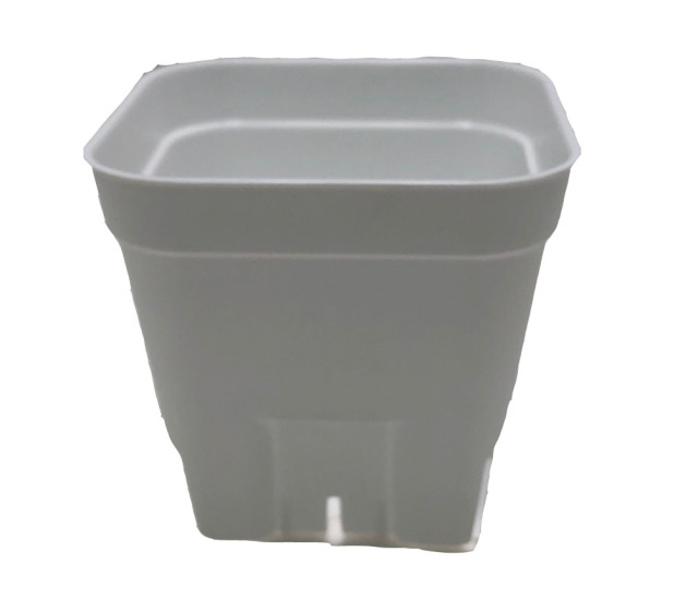 プレステラ 通常型 白 105 スリット入りプラ鉢 800個セット