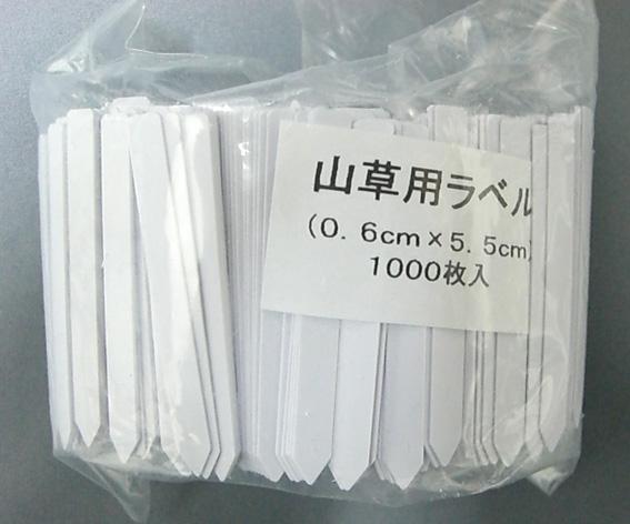 山野草ラベル 1000枚 白 5.5cm 細型 山草ラベル