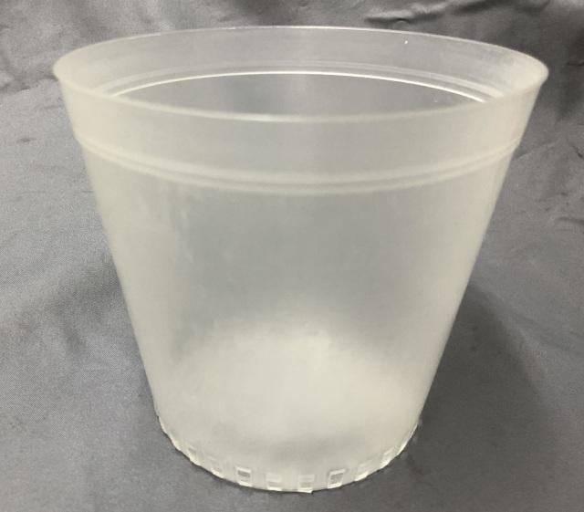 半透明 プラ鉢 12cm 10個