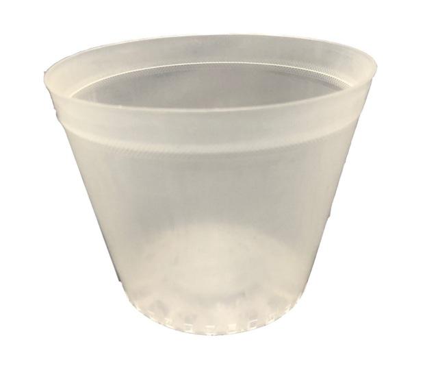 半透明 プラ鉢 13.5cm 10個