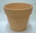 素焼き鉢 5.5号 6枚 ロクロ造り 通気と乾きの良い素焼き鉢 洋蘭 原種