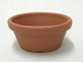 小品盆栽 仕立鉢 シオン鉢 2.5号浅鉢 300枚セット 硬質素焼き鉢
