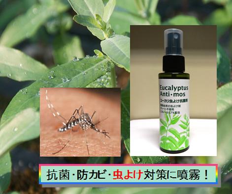 虫よけ対策のユーカリ抗菌剤 ユークリプティス アンチ・モス100ml×10本セット(1リットル分)