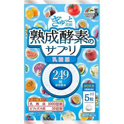 【まとめ買い12個セット】 ぎゅっと濃縮熟成酵素のサプリ 乳酸菌25g(250mg×100粒)