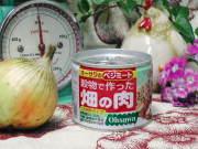 植物性たんぱく100%【穀物で作った畑の肉(ひき肉タイプ)】