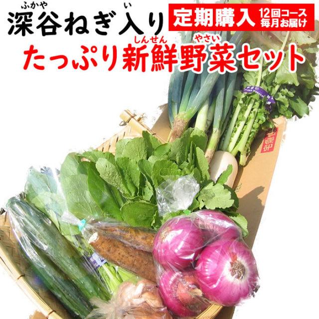 野菜セット8-10定期 12回コース