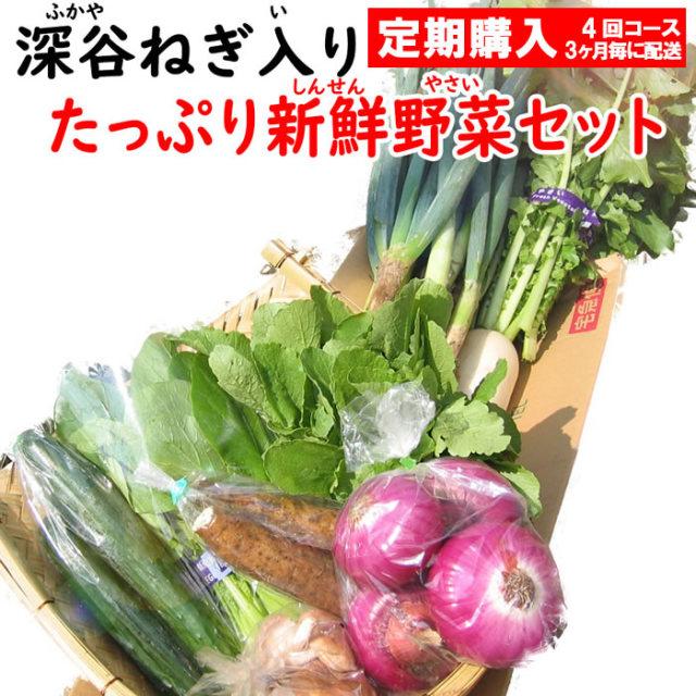 野菜セット8-10定期 4回コース