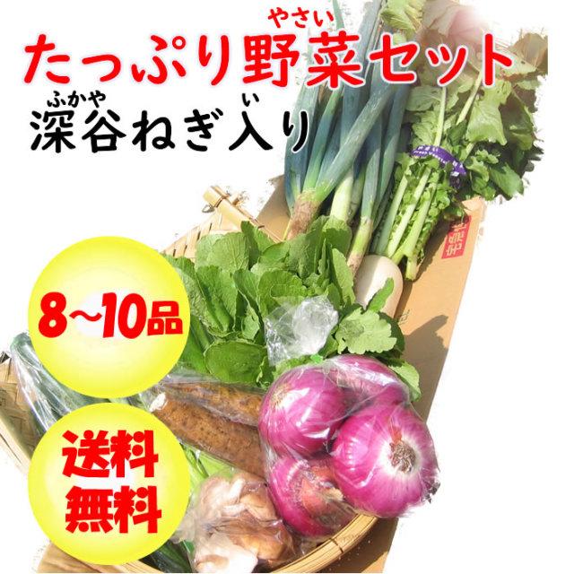 野菜セット8-10 ネギ入り
