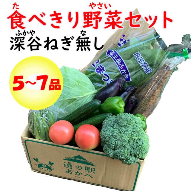 野菜セット5-7 ネギなし