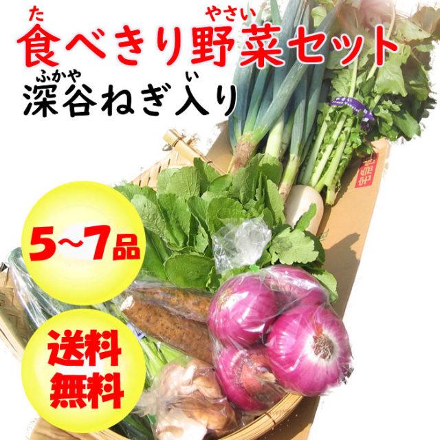 野菜セット5-7 ネギ入り