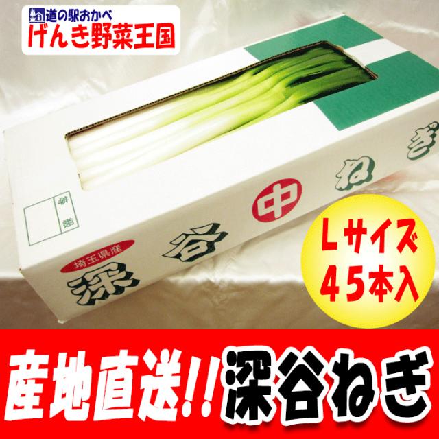 Lサイズ45本