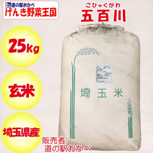 五百川 25kg