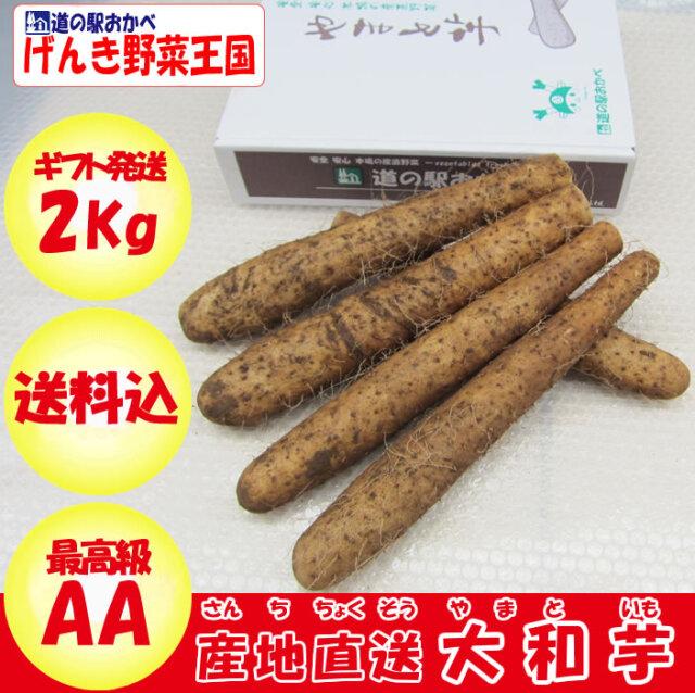 大和芋 AA品 2kg
