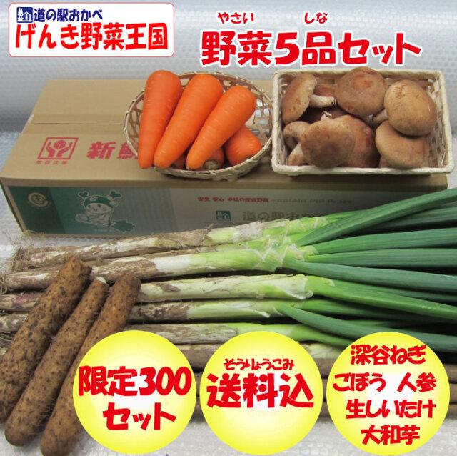 野菜5品セット