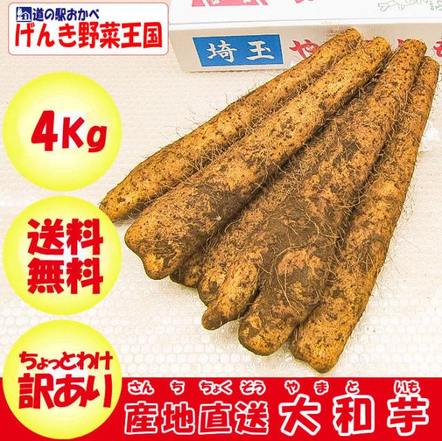 ヤマトイモ A品 4lg