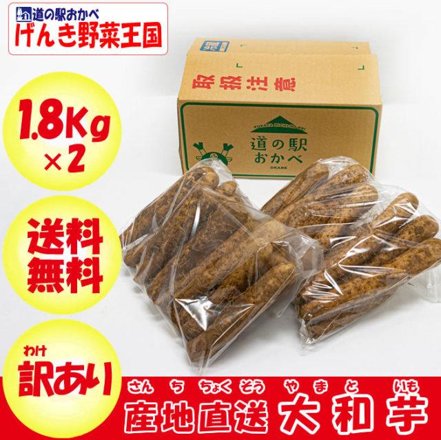 ヤマトイモ B品 3.6lg