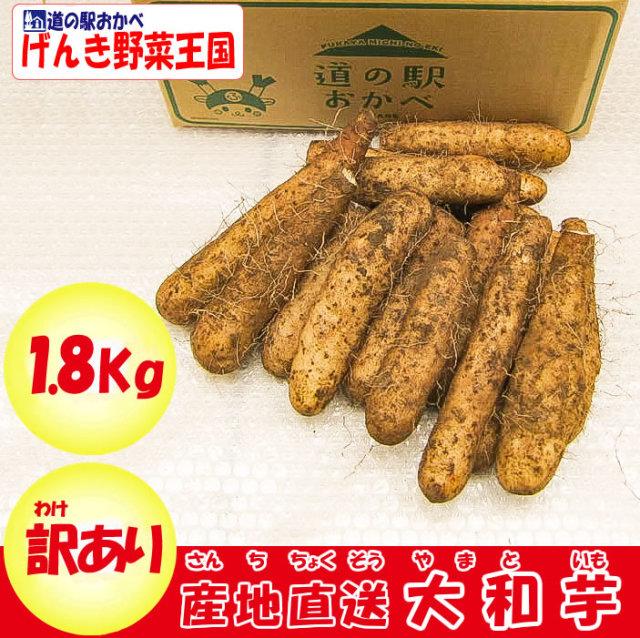 大和芋 B品 1.8kg 送料別