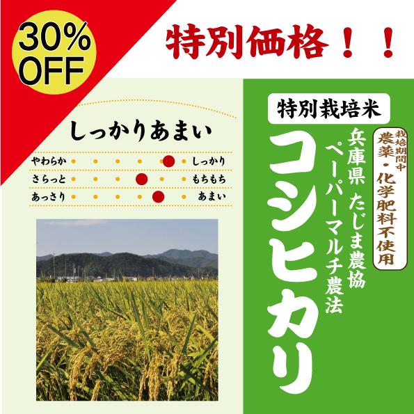 ペーパーマルチ農法
