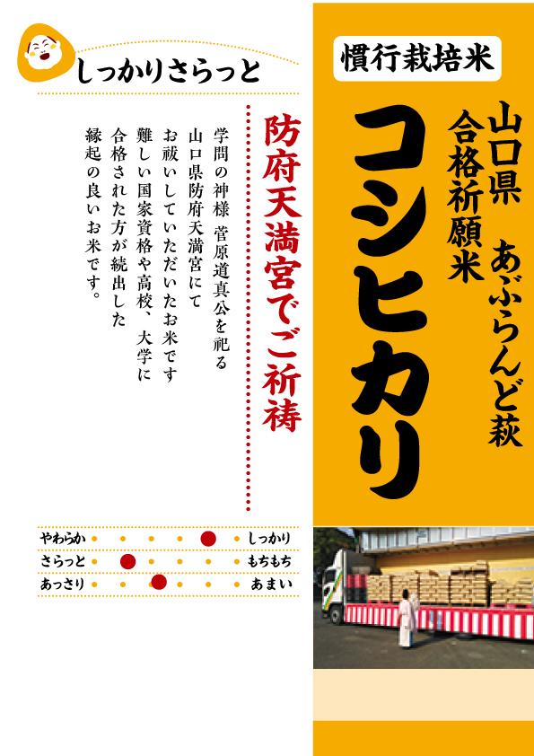 山口コシヒカリ