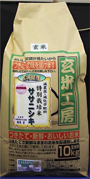 31年産 【送料無料】宮城県産ササニシキ玄米10kg