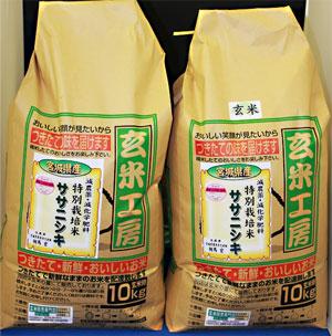 30年産 【送料無料】宮城県産ササニシキ玄米20kg