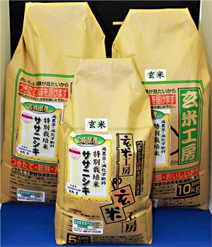 令和2年産 【送料無料】宮城県産ササニシキ玄米25kg