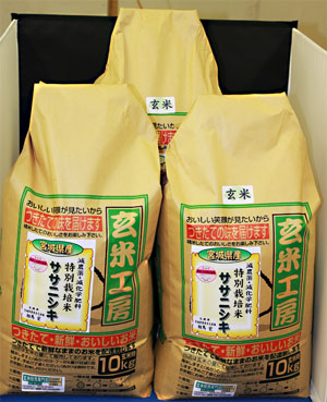 30年産 【送料無料】宮城県産ササニシキ玄米30kg
