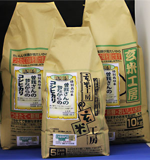31年産 【送料無料】新潟県産コシヒカリ玄米25kg 昔ながらのコシヒカリ