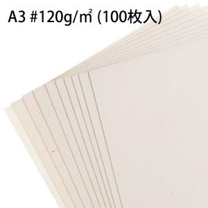 【OA用紙】 A3 #120g/m2 (100枚入)