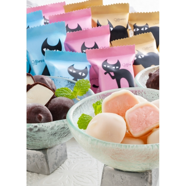 送料無料  イーペルの猫祭り プチチョコアイス(A-EPH) (メーカー直送品・冷凍便)** <C2276568T>